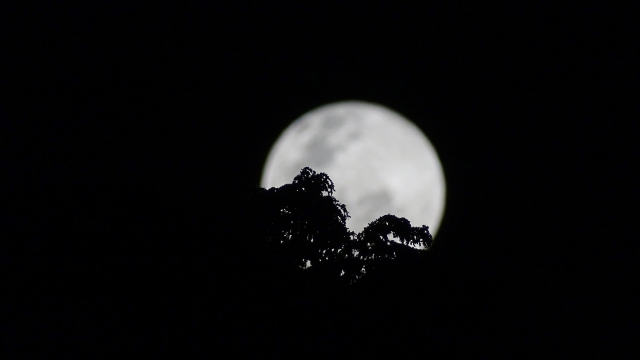 18h48, com inteerferência de árvore.